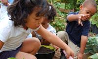 Montessori - 2009 Annie Fisher Montessori Magnet School