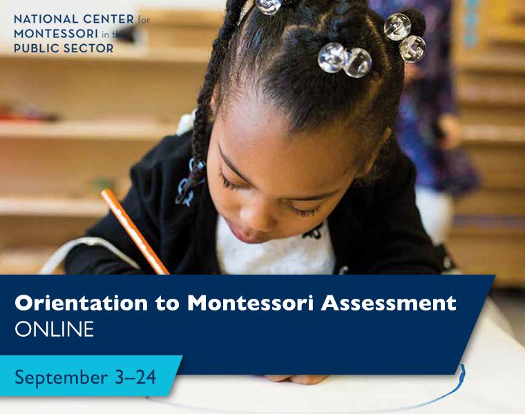 Orientation to Montessori Assessment: Online