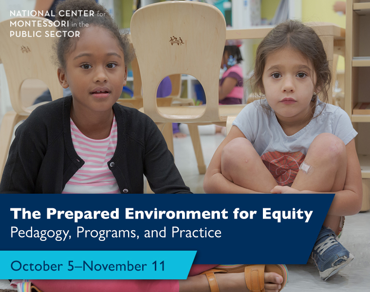 The Prepared Environment for Equity Pedagogy, Programs, and Practice (October 5–November 11)