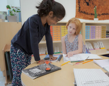 Montessori Child Study Course